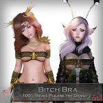 Bitch Bra Main Ad