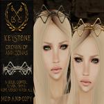 [Keystone] Amazonas