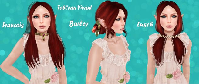 Tableau Vivant at Hair Fair and Seasons Story