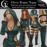_LE_ Elven Rogue Aqua