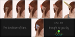 ._Soul_. The Evolution of Ears