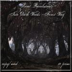 Into Dark Woods - Forest Way