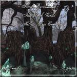 Into Dark Woods - Hollow Tree Cave
