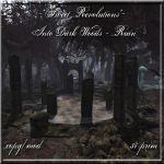 Into Dark Woods - Ruin