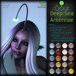 2015 Deep Sea Antennae