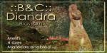 B&CDiandra Blossom Gift