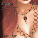 RAVEN COLLAR BRONZE ADD 1