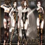 !gO! Valkyrie outfit - vendor